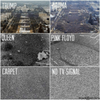 Pink Floyd, Queen, and Pink: TRUMP  AMA  QUEEN  PINK FLOYD  CARPETNO TY SIGNAL meirl