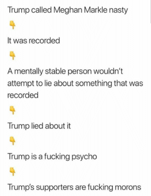 Treason Stickers: Trump called Meghan Markle nasty  It was recorded  A mentally stable person wouldn't  attempt to lie about something that  recorded  Trump lied about it  Trump is a fucking psycho  Trump's supporters are fucking morons Treason Stickers