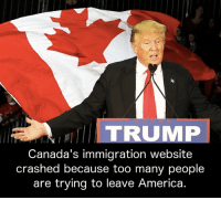 America, Memes, and Canada: TRUMP  Canada's immigration website  crashed because too many people  are trying to leave America.