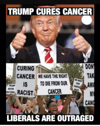 Memes, Cancer, and Trump: TRUMP CURES CANCER  CURING  CANCER  DON  TAK  WE HAVE THE RIGHT  WE WANT  FRUWR ISTO DIE FROM OUat  TRUMP  HATES  OCTORS  RACIST CANCER  CAN  LIBERALS ARE OUTRAGED Trump could cure cancer and people would still hate him