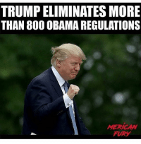 America, Memes, and Obama: TRUMP ELIMINATES MORE  THAN 80O OBAMA REGULATIONS  MERICAW  FURY Hell YEAH!! Follow @mericanfury liberal maga conservative constitution like follow presidenttrump resist stupidliberals merica america stupiddemocrats donaldtrump trump2016 patriot trump yeeyee presidentdonaldtrump draintheswamp makeamericagreatagain trumptrain triggered Partners --------------------- @too_savage_for_democrats🐍 @raised_right_🐘 @conservativemovement🎯 @millennial_republicans🇺🇸 @conservative.nation1776😎 @floridaconservatives🌴