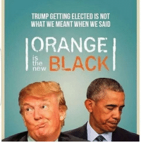 TRUMP GETTING ELECTED IS NOT  WHAT WE MEANT WHEN WE SAID  ORANGE  BLACK  the  new Never forgetti 7-11, bush was a part-time job. . . . . . . . . dankmeme dankmemes memes meme dank maymay maymays lmao ayylmao rofl roflcopter