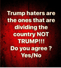 Memes, Trump, and 🤖: Trump haters are  the ones that are  dividing the  country NOT  TRUMP!!  Do you agree?  Yes/No