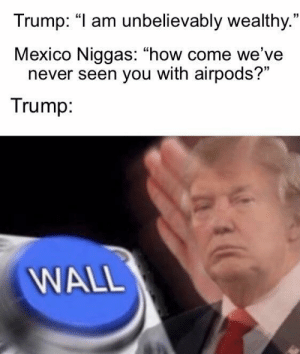 "Wealthy: Trump: ""I am unbelievably wealthy.""  Mexico Niggas: ""how come we've  never seen you with airpods?""  Trump:  WALL"