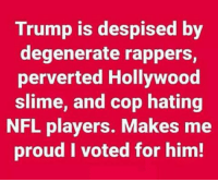 Memes, Nfl, and Trump: Trump is despised by  degenerate rappers,  perverted Hollywood  slime, and cop hating  NFL players. Makes me  proud I voted for him! RE-POST IF YOU AGREE! 👊👍 #Maga 🇺🇸🇺🇸 #Trump2020