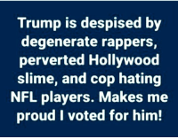 Memes, Nfl, and Trump: Trump is despised by  degenerate rappers  perverted Hollywood  slime, and cop hating  NFL players. Makes me  proud I voted for him! Right!