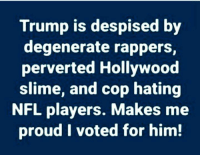 Nfl, Trump, and Proud: Trump is despised by  degenerate rappers,  perverted Hollywood  slime, and cop hating  NFL players. Makes me  proud I voted for him!