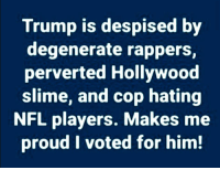 Nfl, Trump, and Proud: Trump is despised by  degenerate rappers,  perverted Hollywood  slime, and cop hating  NFL players. Makes me  proud I voted for him! #Trump2020