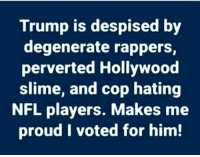 Memes, Nfl, and Trump: Trump is despised by  degenerate rappers,  perverted Hollywood  slime, and cop hating  NFL players. Makes me  proud I voted for him!