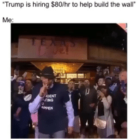 "Memes, Help, and Trump: ""Trump is hiring $80/hr to help build the wall""  Me:  IDENT  TING  APPEN 😂"