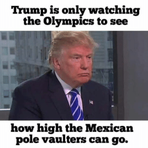 Funny Offensive Memes - Most Offensive Pictures Ever: Trump is only watching  the Olympics to see  how high the Mexican  pole vaulters can go. Funny Offensive Memes - Most Offensive Pictures Ever