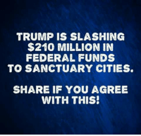 Absolutely agree!: TRUMP IS SLASHING  $210 MILLION IN  FEDERAL FUNDS  TO SANCTUARY CITIES  SHARE IF YOU AGREE  WITH THIS! Absolutely agree!