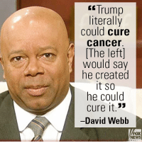 "Friends, Memes, and News: Trump  literally  could cure  cancer.  The left)  would say  he created  it So  he could  cure it.3  -David Webb  FOX  NEWS On ""Fox & Friends,"" David Webb scoffed at liberals and Democrats aghast over President Donald J. Trump's language."