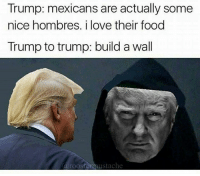 Memes, Mexican, and 🤖: Trump: mexicans are actually some  nice hombres. i love their food  Trump to trump: build a wall  a roosters austache Like JoeBama