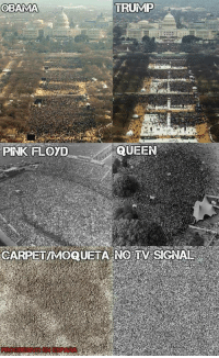 dankmemes Are we talking now?: TRUMP  OBAMA  QUEEN  PINK FLOOD  CARPEIMOQUETA NO TV SIGNAL dankmemes Are we talking now?
