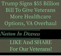 Memes, Trump, and 🤖: Trump Signs $55 Billion  Bill To Give Veterans  More Healthcare  Options, VA Overhaul  Nation In Distress  LIKE And SHARE  For Our Veterans!