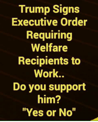 "Memes, Work, and Trump: Trump Signs  Executive Order  Requiring  Welfare  Recipients to  Work..  Do you support  him?  Yes or No"" YES!"