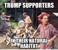 Trump Supporters: TRUMP SUPPORTERS  INTHEIR NATURAL  HABITAT