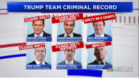 Donald Trump, Lawyer, and Politics: TRUMP TEAM CRIMINAL RECORD  PLEADED GUILTY  SENTENCED  PLEADED GUILTY  GUILTY ON 8 COUNTS  MICHAEL FLYNN  NAT'L SECURITY ADVISER  GEORGE PAPADOPOULOS  CAMPAIGN FOREIGN-POLICY ADVISER  PAUL MANAFORT  CAMPAIGN CHAIRMAN  PLEADED GUILTY  SENTENCED  PLEADED GUILTY  INDICTED  RICK GATES  DEPUTY CAMPAIGN CHAIRMAN  MICHAEL COHEN  PERSONAL LAWYER/FIXER  ROGER STON  CAMPAIGN ADVISER  TWMSNBC