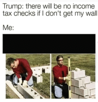 tax: Trump: there will be no income  tax checks if I don't get my wall  Me: