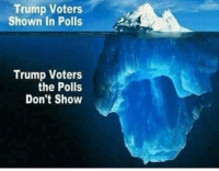 Blue, Trump, and Enemies: Trump Voters  Shown In Polls  Trump Voters  the Polls  Don't Show