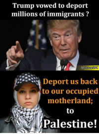 Memes, Immigration, and Israel: Trump vowed to deport  millions of immigrants  fb Israel  us back  to our occupied  motherland;  to Lots of Palestinians will return to their unoccupied Palestine voluntarily without being deported.