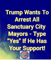 "Memes, Trump, and 🤖: Trump Wants To  Arrest AI  Sanctuary City  Mayors Type  Yes"" If He Has  Your Support  THE  SPIRI  UNLEASHED Yes!"