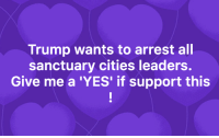 Trump, Yes, and Sanctuary: Trump wants to arrest all  sanctuary cities leaders.  Give me a 'YES' if support this YES!
