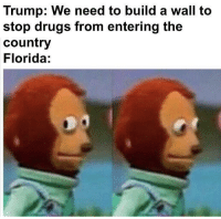 Drugs, Florida, and Trump: Trump: We need to build a wall to  stop drugs from entering the  country  Florida: Trump giving a speech at one of his rallies (2016)