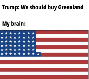 51 now bois: Trump: We should buy Greenland  My brain:  realDallyWire 51 now bois