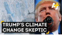 Memes, Skepticism, and 🤖: TRUMP'S CLIMATE  CHANGE SKEPTIC Trump's likely pick to head the EPA? A climate change denier.