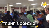 TRUMP'S COMING! TRUMP IS COMING !