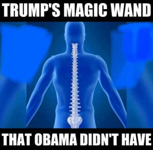 Obama was born with spina bifida and I did not know it.: TRUMP'S MAGIC WAND  THAT OBAMA DIDN'T HAVE Obama was born with spina bifida and I did not know it.