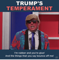 "Memes, Calendar, and Trump: TRUMP'S  TEMPERAMENT  I'm rubber and you're glue!  And the things that you say bounce off me! When ""Temperament"" is on your word-of-the-day calendar..."