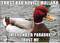 Advice Mallard: TRUST BAD ADVICE MALLARD  THIS IS NOT A PARADOX  TRUST ME