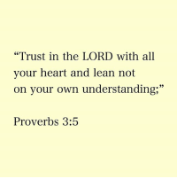 "proverbs: ""Trust in the LORD with all  your heart and lean not  on your own understanding,""  Proverbs 3:5"