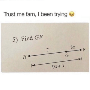Meirl: Trust me fam, I been trying  5) Find GF  3x  7  F  не-  G  9x+1 Meirl