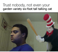 me irl: Trust nobody, not even your  garden variety six-foot tall talking cat me irl