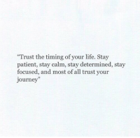 RT @Positivevibe101: https://t.co/vF9cqQDCK3: Trust the timing of your life. Stay  patient, stay calm, stay determined, stay  focused, and most of all trust your  journey RT @Positivevibe101: https://t.co/vF9cqQDCK3