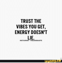 vibing: TRUST THE  VIBES YOU GET  ENERGY DOESN'T  LIE  INSTAGRAM THEGOODQUOTE  funny.