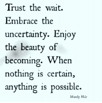 Memes, 🤖, and Uncertainty: Trust the wait.  Embrace the  uncertainty. Enjoy  the beauty of  becoming  When  nothing is certain  anything is possible.  Mandy Hale