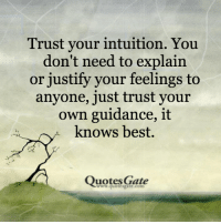 best quotes: Trust your intuition. You  don't need to explain  or justify your feelings to  anyone, just trust your  own guidance, it  knows best.  Quotes Gate  ww.quotesgate.com