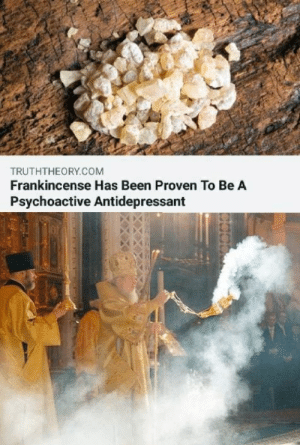 Church, God, and Jesus: TRUTHTHEORY.COM  Frankincense Has Been Proven To Be A  Psychoactive Antidepressant lastvalyrian:  artisinal-cheese:  catherine-siena-dr-of-the-church:  koobaxion: damn then why was the monster so sad all the time I don't know which is funnier, the images or that comment   Wiseman to baby jesus- wiseman #1 : I bring you gold wiseman #2: I bring you myrr wiseman #3 : I bring you antidepressants because your life ain't getting any better than this barn kid.  Medieval serf: going to church always helps my sorrows Medieval priest: … ehm, yeah, it's the closeness to god