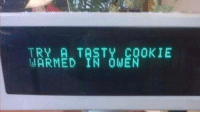 Memes, Good, and 🤖: TRY A TASTY COOKIE  WARMED IN OWEN Nah, I'm good.