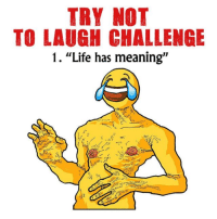 """Instagram, Life, and Meaning: TRY NOT  TO LAUGH CHALLENGE  1. """"Life has meaning"""" www.instagram.com/calkearns"""