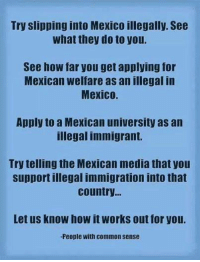 Memes, Soon..., and Common: Try slipping into Mexico illegally. See  what they do to you.  See how far you get applying for  Mexican welfare as an illegal in  Mexico.  Apply to a Mexican university as an  illegal immigrant.  Try telling the Mexican media that you  support illegal immigration into that  country  Let us know how it works out for you.  -People with common sense Prepping Website Fully Launching Soon!  ➡️ Conservative Prepping ⬅️
