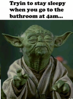 Dank, 🤖, and You: Tryin to stay sleepy  when you go to the  bathroom at 4am... Can't loose the tired.