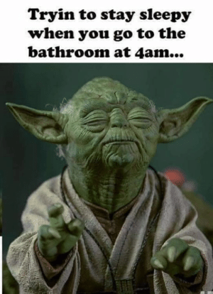 Dank, 🤖, and You: Tryin to stay sleepy  when you go to the  bathroom at 4am...