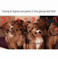 so real: *trying to figure out plans in the group text like  @bustle so real