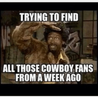 👀: TRYING TO FIND  ALL THOSE COWBOY FANS  FROM A WEEK AGO 👀